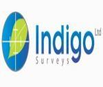 Indigo Tree Surveys
