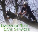 Liverpool Tree Care