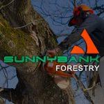 Sunnybank Forestry